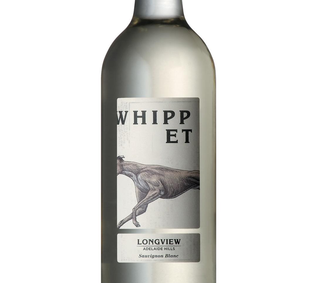 WhippetHIRESb