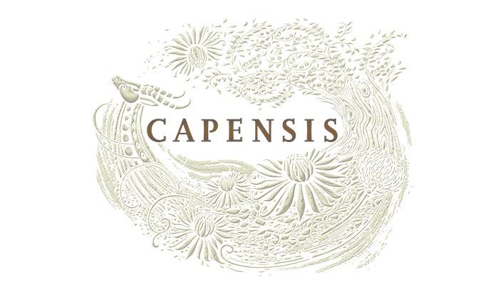 capensis_art