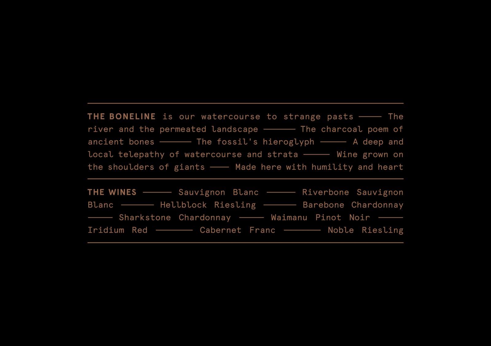 Boneline-Identity_2-1600x1128